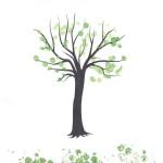 Tosia drzewo-1